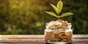 Ahorro e Inversiones